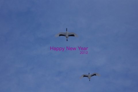 nenga-2012re.jpg